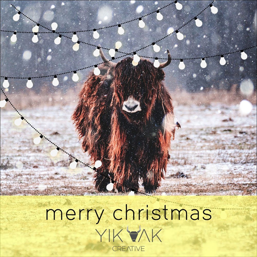 Yik Yak Creative | Yak | Web Design | Web Designer | Website | SEO | Graphic Design | Logo Design | Hills District | Hornsby | Galston | Dural | Castle Hill | Cherrybrook | Rouse Hill | Hawkesbury