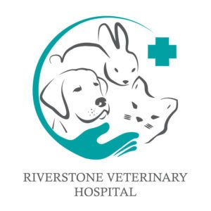 Yik Yak Creative | Vet Logo Design | Riverstone | Western Sydney Graphic Designer | Penrith