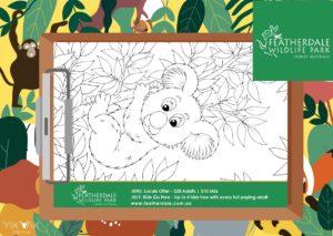 Featherdale Wildlife Park | Sydney | Kids | Special Offers | Colouring | Discount | Flyer Graphic Designer | Blacktown | Hills District Mums | Parramatta