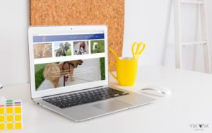 Vicki Pet Sitting | Sitter | How Do I Get My Website Found on Google | Hills District | Small Business | Sydney Web Design | SEO Company